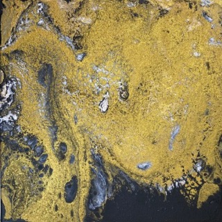 Gold and black alchemy I